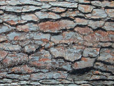 Photograph - Jigsaw - Pine Tree Bark by Robert Schaelike