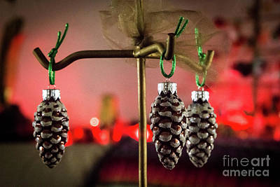 Photograph - Jingle Pinecones by Cheryl McClure