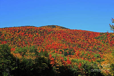 Photograph - Jnh October Colors by Patti Whitten