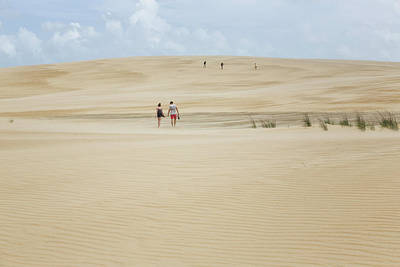 Photograph - Jockey Ridge Dune by Fran Gallogly