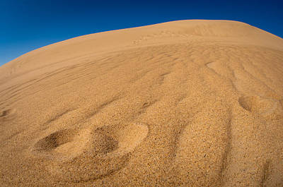 Photograph - Jockey's Ridge, Nc by Joye Ardyn Durham