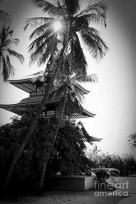 Photograph - Jodo Shu  Beautiful Palms At Chion-in Japanese-style Temple  Lahaina Maui Hawaii  by Sharon Mau