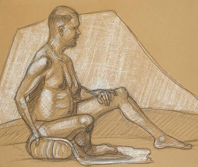 Drawing - Joey Seated On Pillow by Donelli  DiMaria