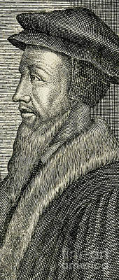 French Leaders Drawing - John Calvin by French School