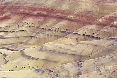 John Day Fossil Beds Print by Greg Vaughn - Printscapes