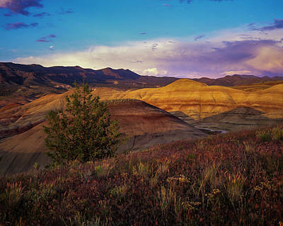 Photograph - John Day Fossil Beds National Monument by Robert Potts