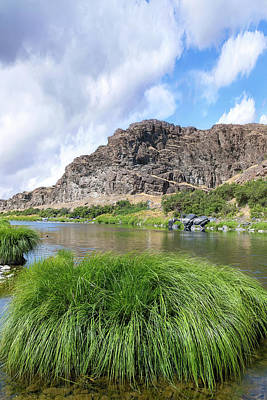 Photograph - John Day River Landscape In Summer Portrait by David Gn