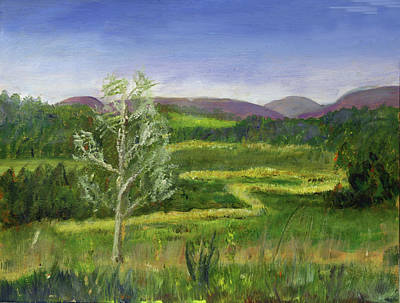 Painting - Pete's Riparian Forrest Buffer by Donna