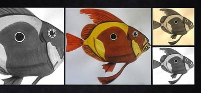 Photograph - John Dory Collage by Joan Stratton