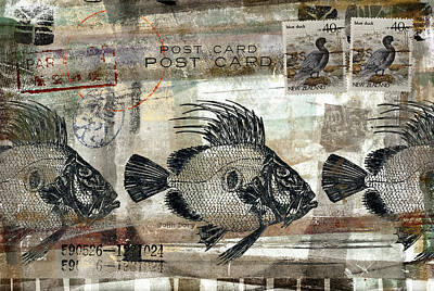 Montage Mixed Media - John Dory Fish Postcard by Carol Leigh