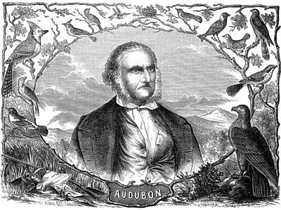 John James Audubon Print by Granger