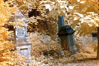 Photograph - Autumnal Walk At Abney Park Cemetery by Helga Novelli