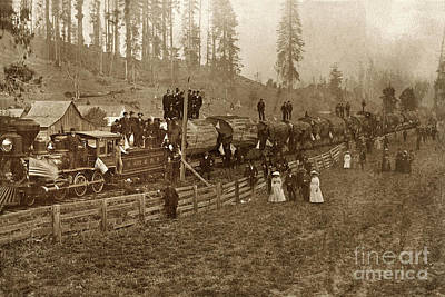 Photograph - John Vance's Logging Train, Humboldt  And Mad River Railroad Circa 1880 by California Views Mr Pat Hathaway Archives