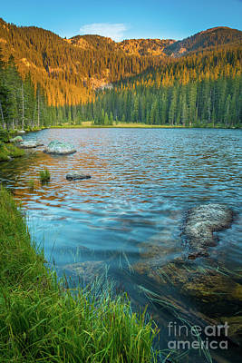 Photograph - Johnson Lake Morning by Inge Johnsson