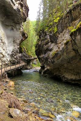 Photograph - Johnston Canyon by Frank Townsley