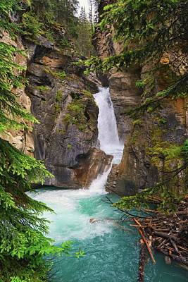 Photograph - Johnston Canyon - Lower Waterfall by Karl Anderson