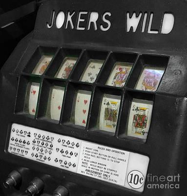 Joker's Wild  Art Print by Steven Digman