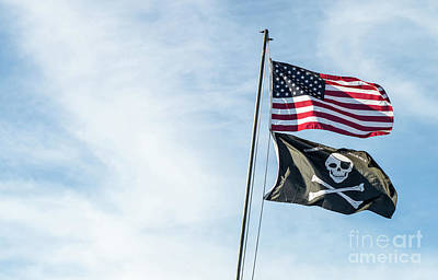 Photograph - Jolly Roger Excellence by Cathie Richardson