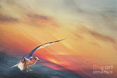 Digital Art - Jonathan Seagull by Georgianne Giese