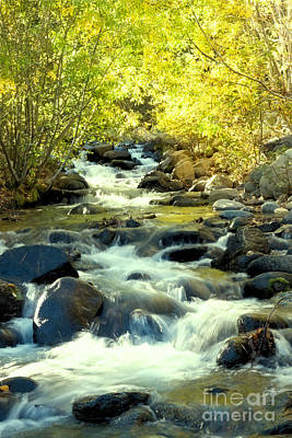 Photograph - Jones Creek In Fall by Vinnie Oakes