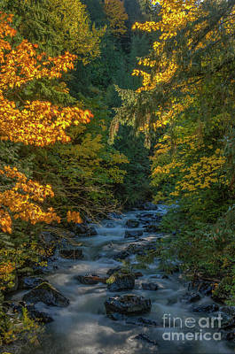 Photograph - Jones Creek by Rod Wiens