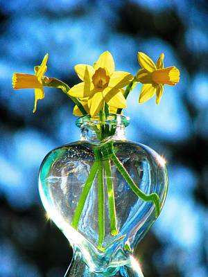 Photograph - Jonquils In The Sun by Angela Davies