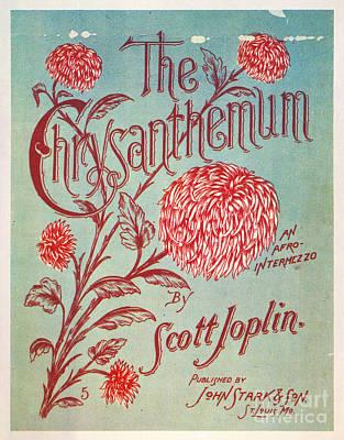 Photograph - Joplin: Chrysanthemum by Granger