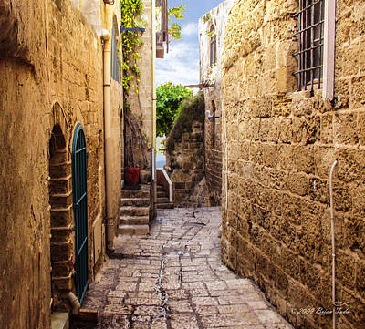 Fun Patterns - Joppa Israel Passageway by Brian Tada