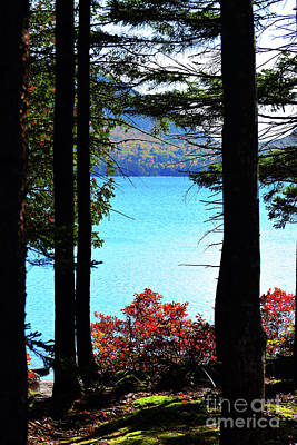 Photograph - Jordan Pond by Patti Whitten