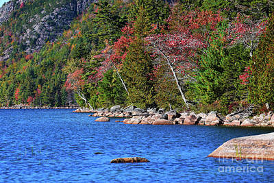 Photograph - Jordan Pond Shoreline by Patti Whitten
