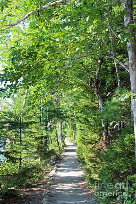 Acadia Photograph - Jordan Pond Trail Iv by Kathleen Garman
