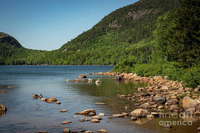 Photograph - Jordon Pond Acadia by Judy Wolinsky