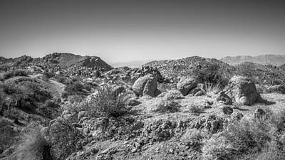 Photograph - Joshua Tree - Cottonwood Springs Trail by Alexander Kunz