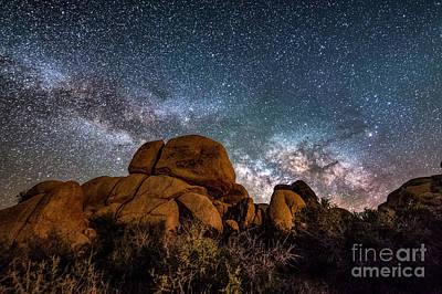 Photograph - Joshua Tree Nights by Willard Sharp