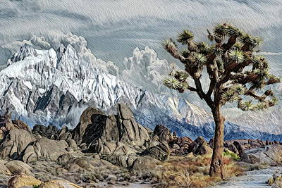 Mountains Photograph - Joshua Tree by Russ Harris