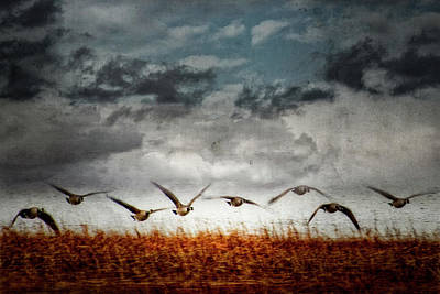 Photograph - Journey 5 by John Whitmarsh