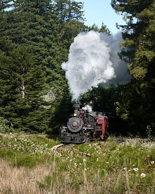 Photograph - Journey By Steam by Betty Depee