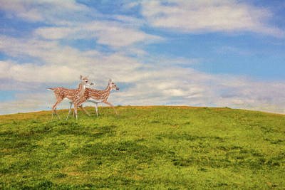 Twin Fawns Painting - Journey To The Top Of The World by Jai Johnson