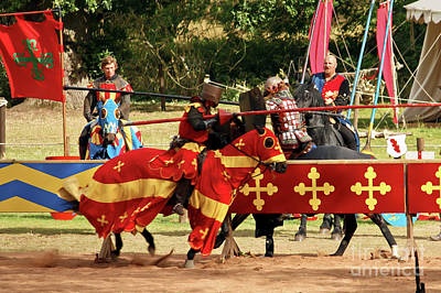 Photograph - Jousting by Terri Waters