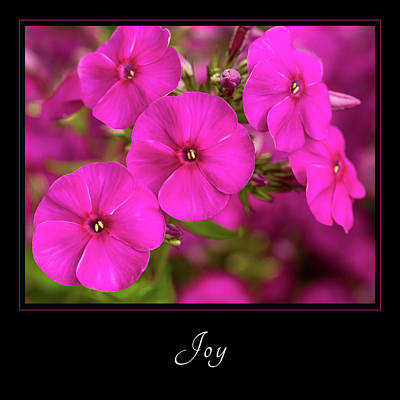 Photograph - Joy 2 by Mary Jo Allen
