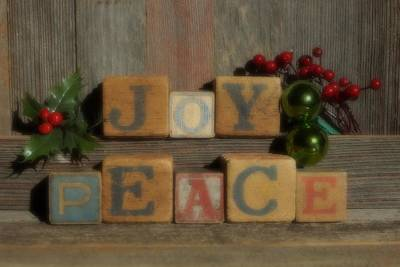 Photograph - Joy And Peace Soft Focus by Steven Clipperton