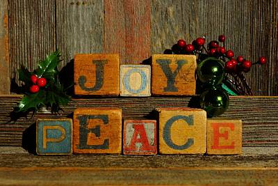 Photograph - Joy And Peace  by Steven Clipperton