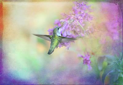 Joy In The Garden Print by Lynn Bauer