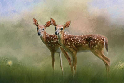Twin Tailed Photograph - Joy Times Two Deer Art by Jai Johnson