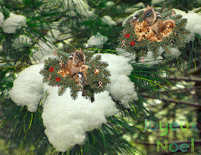 Stocktrek Images - Joyeux Noel #10 by Listen LeeMarie