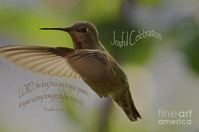 Photograph - Joyful Celebration by Debby Pueschel