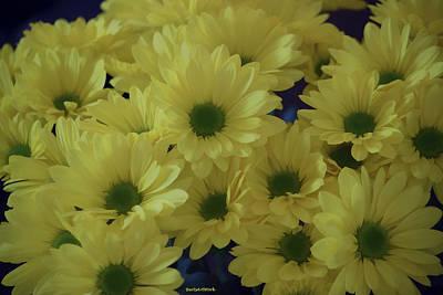 Photograph - Joyful Cluster Floral by Roberta Byram