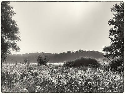 Photograph - Joys Of August Mornings by Ismo Raisanen