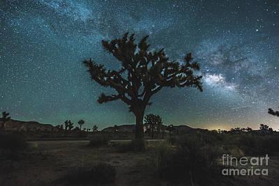 Milky Way Photograph - Jt Milkyway by Robert Loe