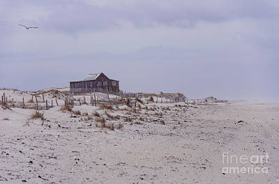 Photograph - Judge's Shack by Debra Fedchin